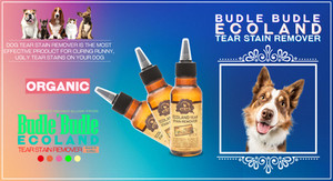 If you are unfamiliar with tear stains in dogs, they are dark color stains which appear right below the eyes, on the snout of dogs. The tear stains are caused by (surprise!) the dog's tears, which may or may not be caused by health issues. Some dog breeds have shallow eyelids, which results in the tears of the dog spilling onto the fur from the corners of their eyes and staining the fur. Other causes which may be health-related include the blockage of the tear drainage holes, or eye irritants such as long fur around the eyes or other environmental irritants.  Budle Budle Ecoland Tear Stain Remover is the most effective product for curing runny, ugly tear stains on your dog or cat effectively, safely and gently.  This is an eye treatment solution that is non-irritating and proven to prevent eye leakage.  Before Treatment: The best way to deal with tear stains is to help prevent their occurrence, which will not only keep your dog's physical aesthetics unmarred but will also eliminate the need to subject your pooch to treatments. The prevent tear stains you will have to keep your dog's eyes clean by making sure fur around the eyes are trimmed short so they are not irritating the eyes and making sure that water does not get into your dog's eye during bathing.