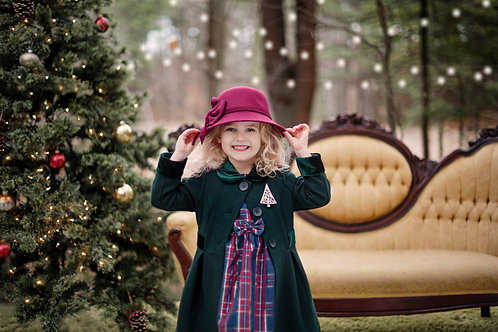 Holiday Mini Sessions Dec. 5th  (Outdoor)