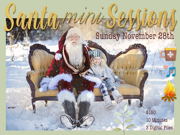 Santa Mini Sessions copy.jpg