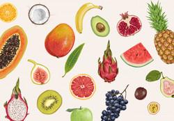 fresh-fruit-background_1067-242 (1)