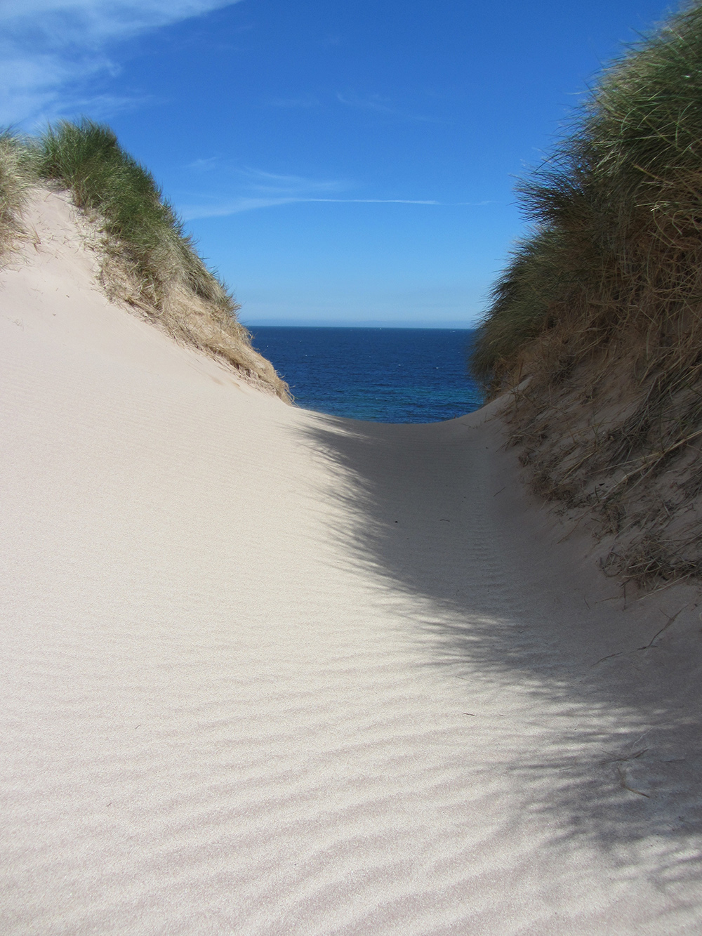 Sand Dunes Balnakiel