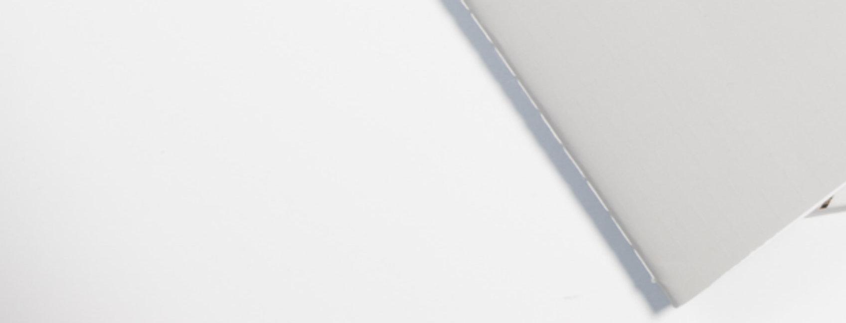 pexels-ylanite-koppens-843266.jpg