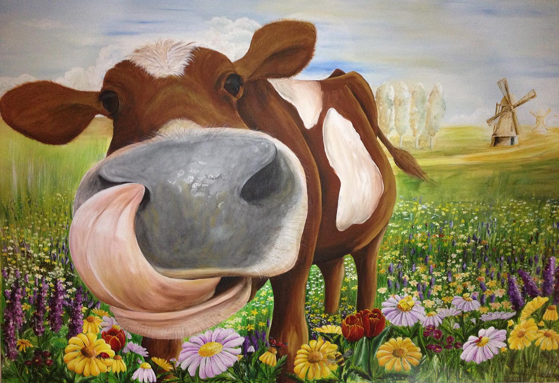 Cow, close encounter