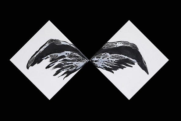 Raven Wings