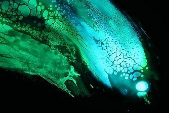 Melissa Blue Detail 6