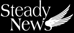 SteadyNews,Team,Collaboration,Lösung,Team