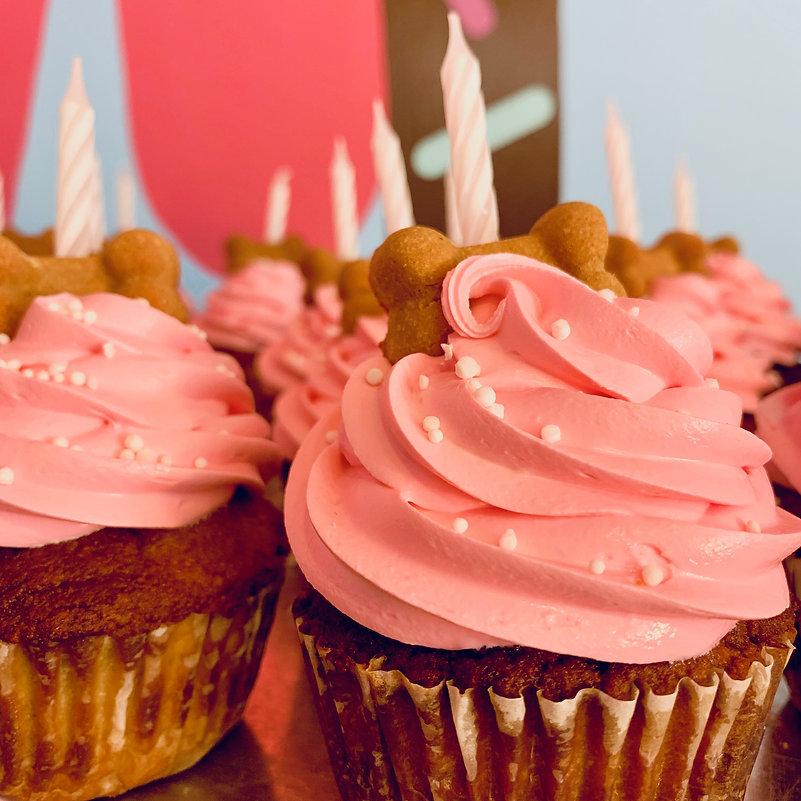 Dog_cupcakes_pink_large.jpg