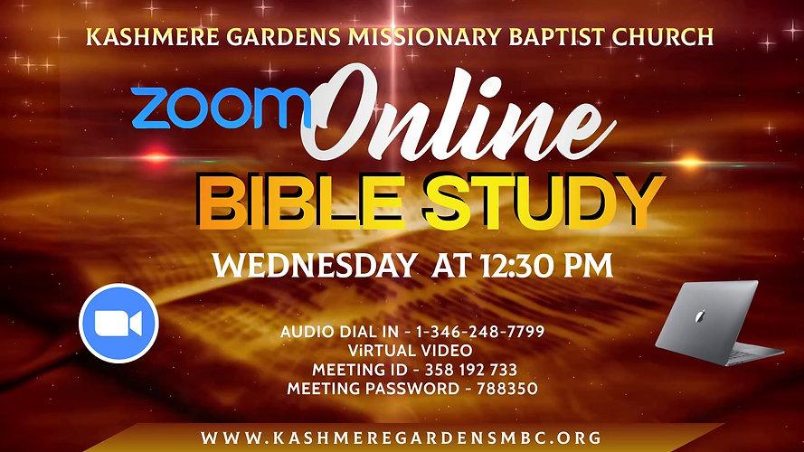 Copy of Copy of ZOOM brown BIBLE STUDY.j