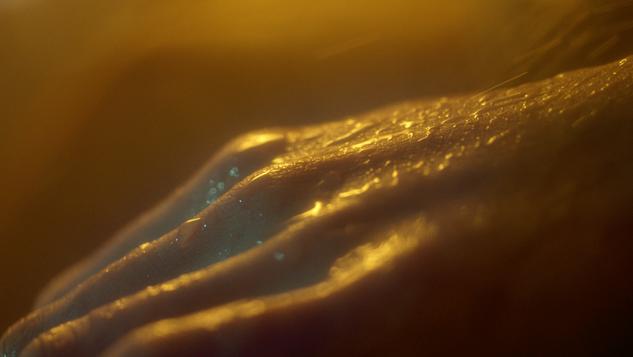 Spindel Film | Framegrab3