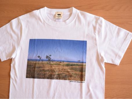 フォトTシャツ始めました。