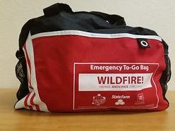 Emergency Go Kit.jpg