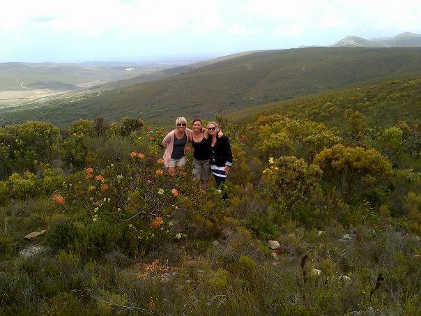 Hiking in the Fynbos