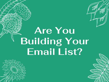 Are You Building Your Email List?