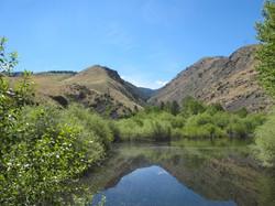 Jesse Creek