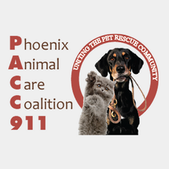 pacc911-logo-clear-background.png