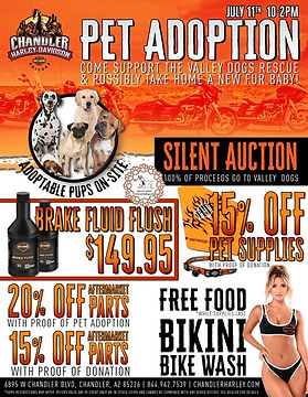 AZ09_Pet_Adoption_Flyer.jpg