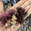 Thumbnail: 100% Wildcrafted Chondrus Crispus (Dr. Sebi recommended)
