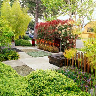 Front garden lawn free