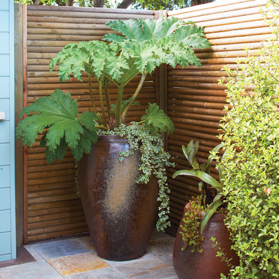 Sunset privacy screen planter