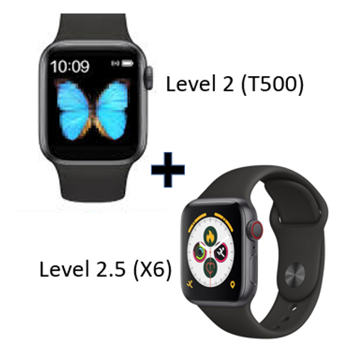 Inventory Sale Smart Watch (Level2 and Level2.5)