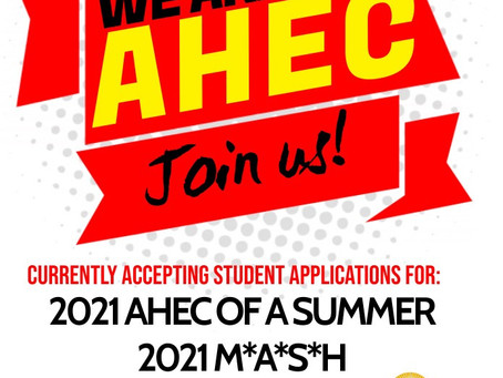 AHEC of a Summer and MASH Program