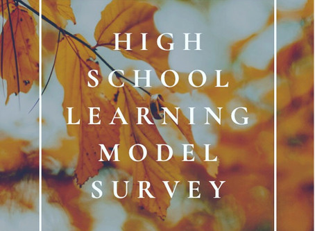 High School Learning Model Survey