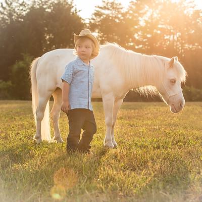 Jackson Pony Session