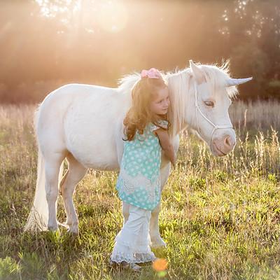 Unicorn Session