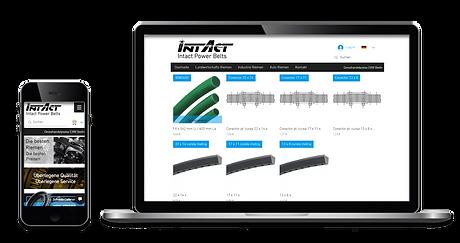 Images de site web ordinateur et mobile de Intact Power Belts