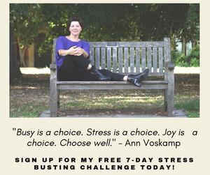 Michelle Audette Life Coach Stress Busting Challenge
