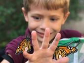 student with butterflies.jpeg