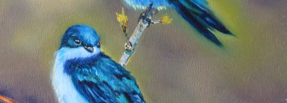 34 - Rosie Ratigan - Birds of a Feather