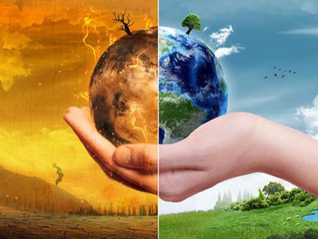 A importância da sustentabilidade no nosso dia a dia