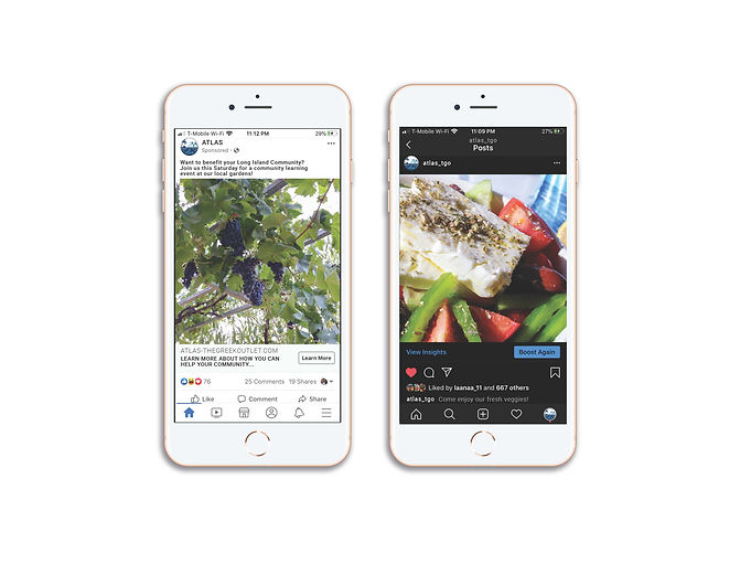 phone mock up of ads.jpg