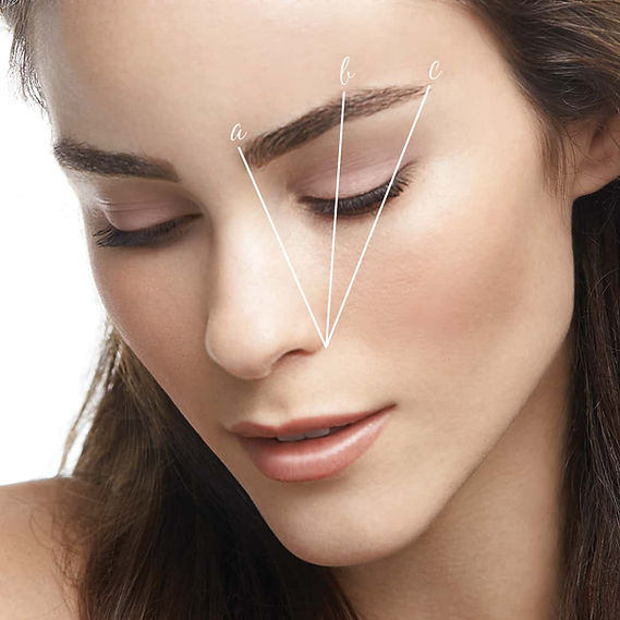 eyebrow mapping.jpg