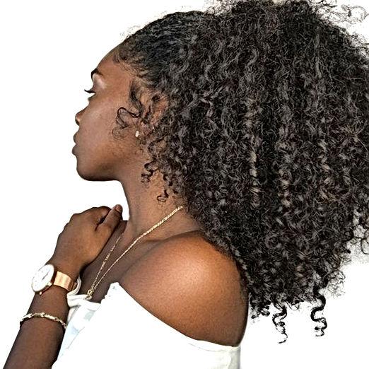 ponytails natural2.jpg