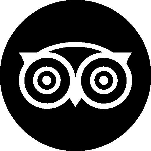 tripadvisor-icon-12008