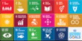 African Diaspora 2030 Envision 2030 SGD
