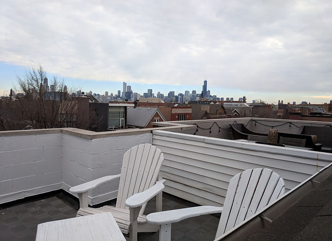 Wicker Park Top Floor Condo For Sale 1546 N Boswort Ave 3N