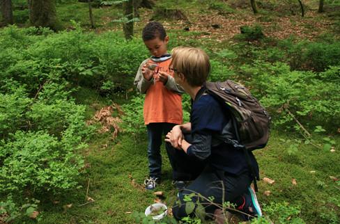 Geocaching und Waldpädagogik