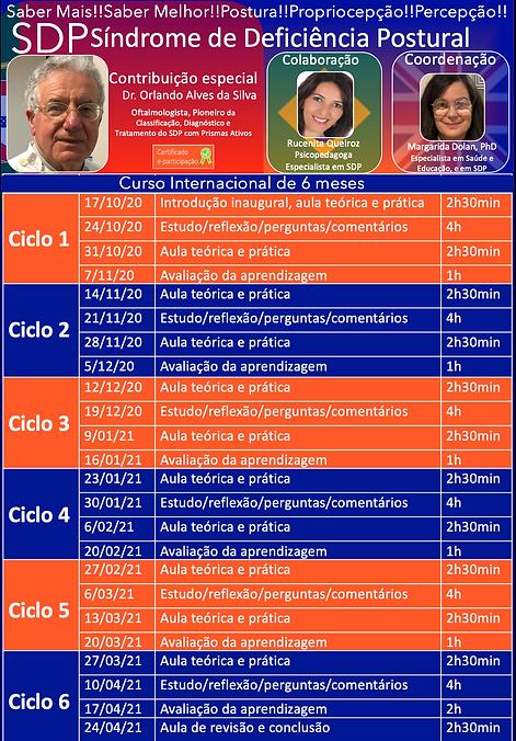 SDP Curso 6 meses.png