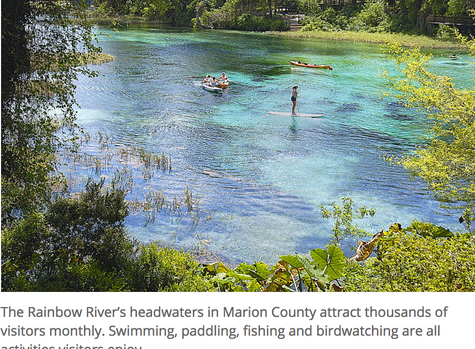 Florida Springs Council challenges state over management of Rainbow Springs, other waters