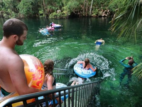 Groups protest new Florida springs action plans