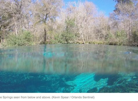 Algae plaguing Florida's iconic springs triggers major legal battle
