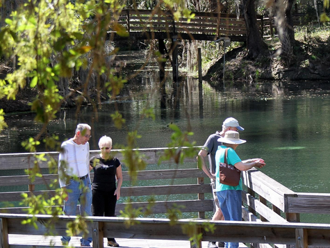 Florida springs plans on hold until 2019