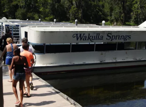 Wakulla Springs cleanup plan on hold, DEP swamped by BMAP protests
