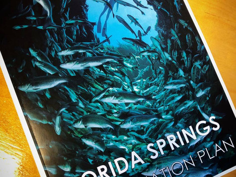 Robert Knight: Florida's springs don't have to fail (opinion: regarding the Florida Springs Institut