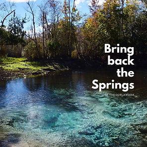 Bring back the Springs.jpeg