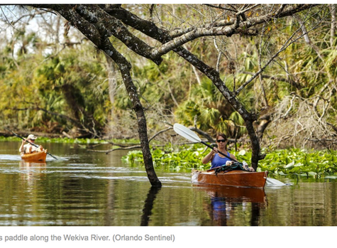 Do right by the Wekiva River and take another look at the plan to save it | Commentary