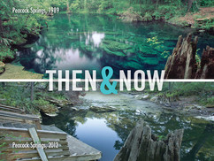 then and now peacock.moran.kn.jpeg